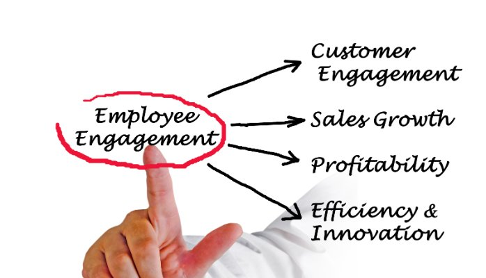 Employee Engagement: Stop Measuring, Start Doing